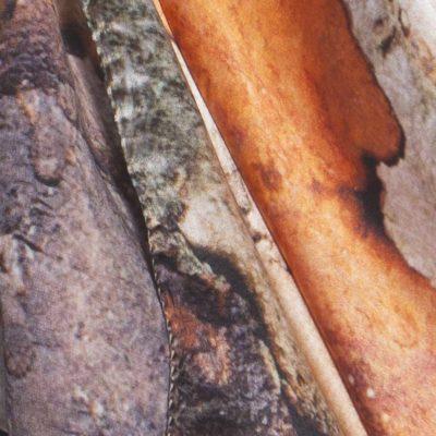 Yunnan Crabapple  Tree Bark 100% silk scarf by Howard Guest - Detail