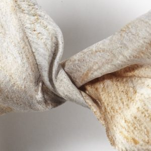 Cider Gum Eucalyptus Silk Scarf