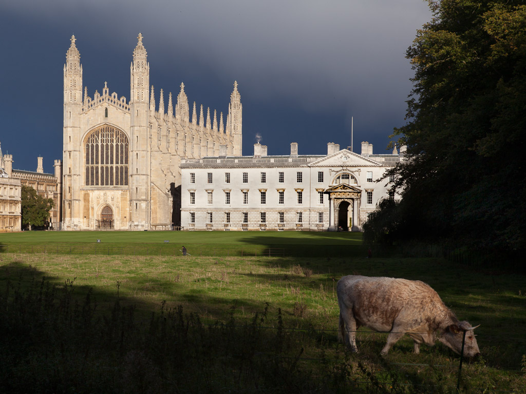 King's College and the Chapel, Cambridge from the Backs. Visit Cambridge